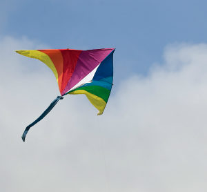 Kite Cropped